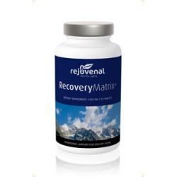 RecoveryMatrix 90 tabs
